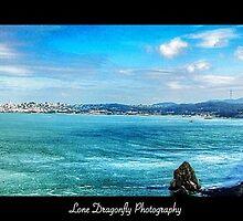 San Francisco Bay by Lonedragonfly