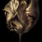 Polished Copper Tulip by alan shapiro