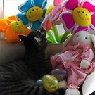 Kitty Easter Basket by Jan  Tribe
