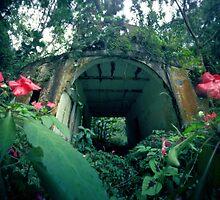 El Cuco's House, El Yunque, Puerto Rico by HagstarStudios