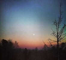 Winter Sunset by oneshadeofgrey