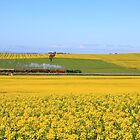 3642 passes Canola fields  - Old Junee by Yvonne Kirk