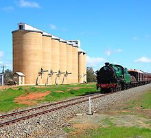 3642 at Old Junee Silos by Yvonne Kirk