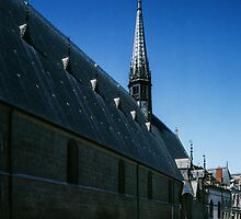 General external view Hotel de Dieu Beaune France 198404290017 by Fred Mitchell