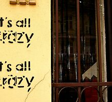 It's all CRAZY  by sofficino74