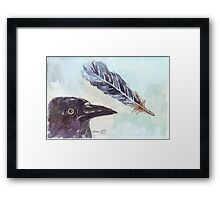 A Crow's Wing Feather Framed Print