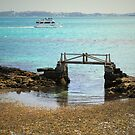 Low Tide  by triciamary