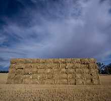 Stacked by Darren Wright