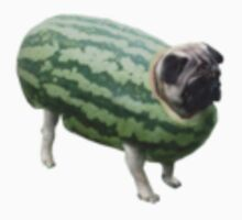 Pug Melon by semiradical