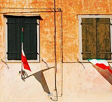 Italian Flags on Rural Building by jojobob