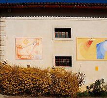 Friulian Farming Culture Museum by jojobob