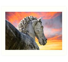 Noble Horse Strong Sky Art Print