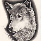 Wolf by Hannah Falvey