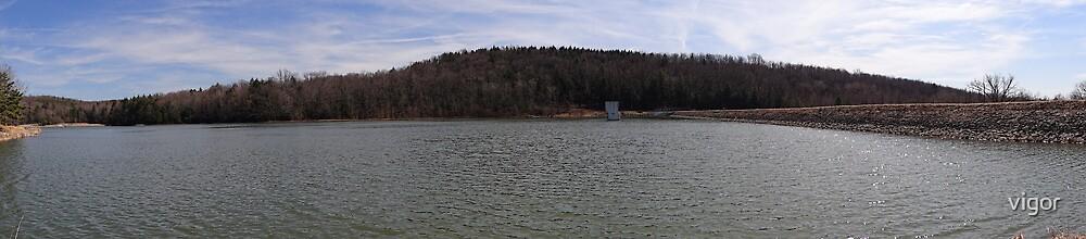 Panorama of the lake by vigor