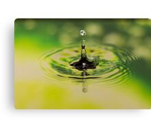 Splash in lime Canvas Print