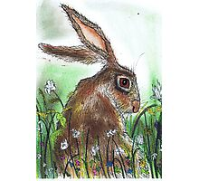 HARE WITH FLOWERS Photographic Print
