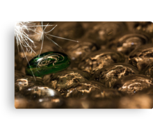Sparking Up Canvas Print