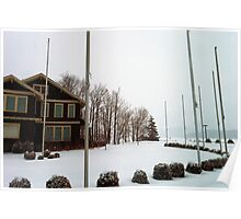 Shrubbery and FlagPoles Poster