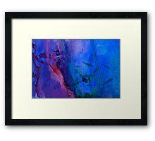 Marine Life Framed Print
