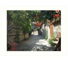 street scene bulgaria Art Print