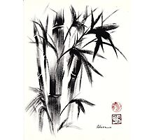 Compassion - Original Zen Spiritual Bamboo painting dedicated to the Dali Lama Photographic Print