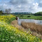 Spring in Holland by TheaDaams