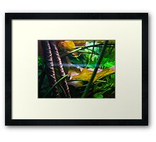 Aqua World : Green Tank Framed Print