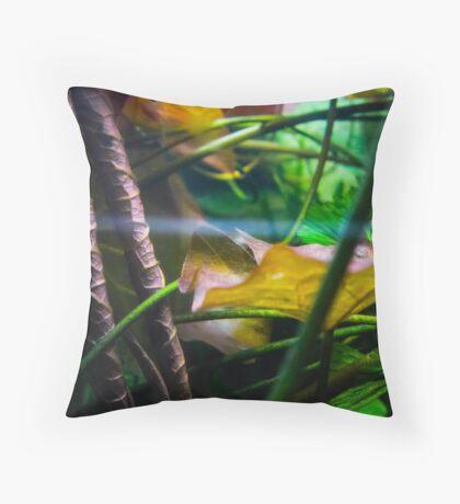Aqua World : Green Tank Throw Pillow