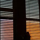 Window Light #2 by goddarb