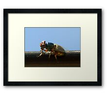 ©NS Tiny Green IA Framed Print
