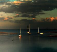 Masts on the Medway  by larry flewers