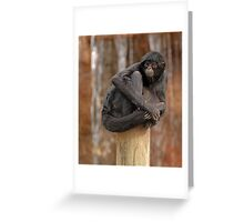 Pole Topper Greeting Card
