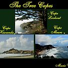 THREE CAPES...OREGON COAST by RoseMarie747