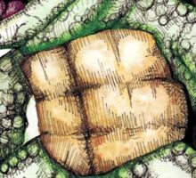 Teenage Mutant Snapping Turtle - Leonidas Sticker
