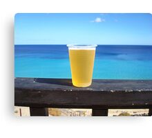 Beer in the sun Canvas Print