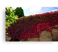 Red wall of autumn  Canvas Print