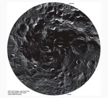 mosaic lunar south pole by welcomezampi