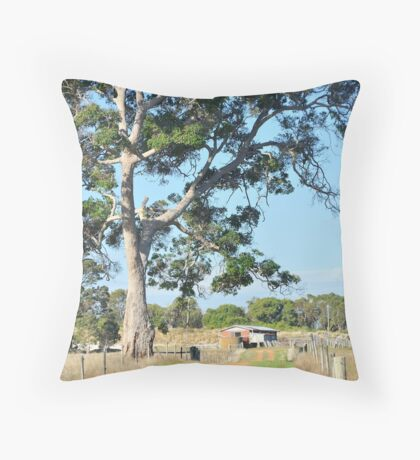 Past the Tree near the Old Dairy Throw Pillow