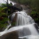 Eurobin Falls  by Cameron B