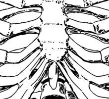 Human Anatomy: Rib Cage Sticker