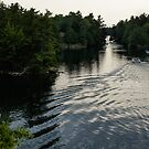 Silver Light and Ripples - Thousand Islands, Saint Lawrence River by Georgia Mizuleva