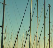 sailing in Bodrum marina Sticker
