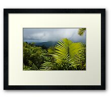 Tropical Rainforest - Jungle Green and Rain Clouds Framed Print