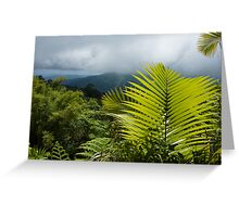 Tropical Rainforest - Jungle Green and Rain Clouds Greeting Card