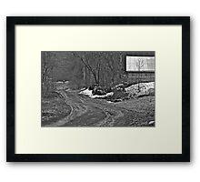 4/13/14a  Framed Print
