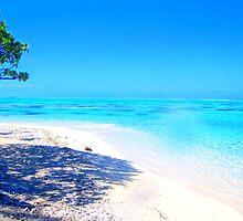 Remote Island Paradise  by Honor Kyne