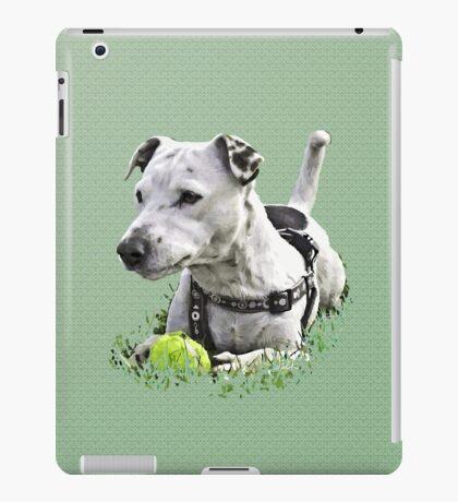 Jack : Jack Russel Terrier x Staffy iPad Case/Skin