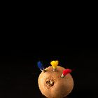 I Hate Fruit - Kiwi Fruit by Alan Organ