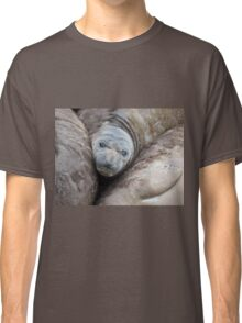 Northern Elephant Seal Pup Resting Classic T-Shirt
