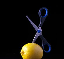 I Hate Fruit - Lemon by Alan Organ